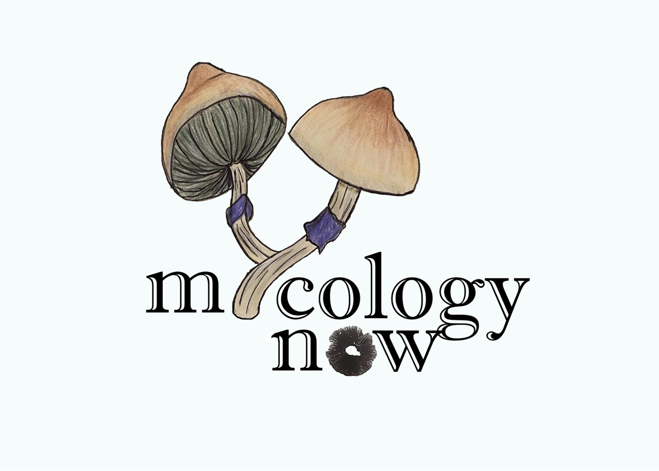 Spore Syringes' Microscopy | Mycology Now